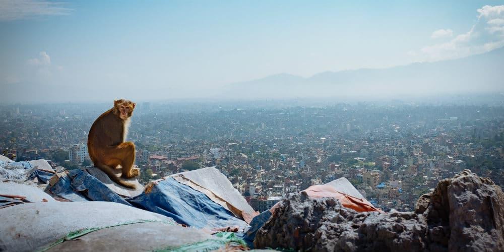 abe-i-nepal