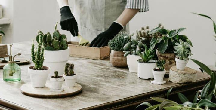 Her er fire nemme projekter til hjemmet, som du selv kan lave ud af indkøb fra dit lokale byggemarked